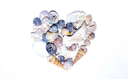Foto de Seashell heart shape. Small marine colored orange blue pink violet sea shells of different shapes on white background. Design template - Imagen libre de derechos