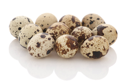 quail eggs isolate, close-up