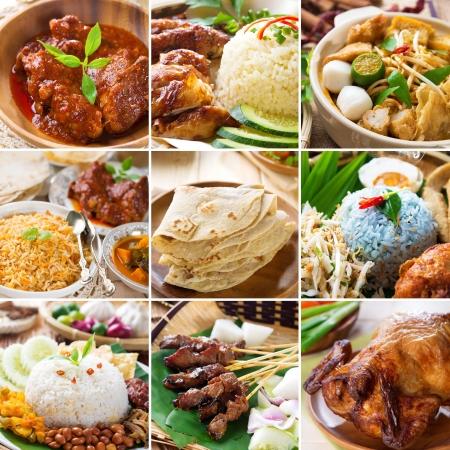 Asian food collection. Various Asia cuisine, curry, rice, noodles, biryani, roti chapatti, nasi kerabu, nasi lemak, satay and roast chicken.