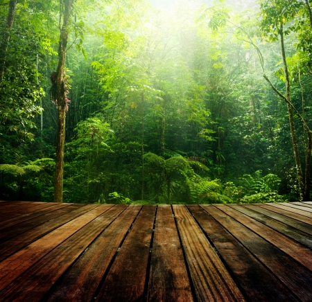 Wooden floor perspective and green forest with ray of light.