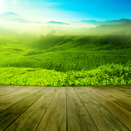 Photo pour Wood platform landscape view of tea plantation with blue sky in morning. Beautiful tea field Cameron Highlands in Malaysia. - image libre de droit
