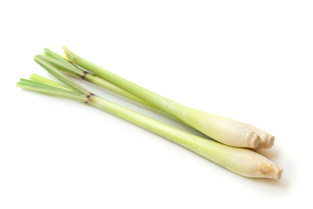 Foto per Fresh green lemongrass isolated on white background. - Immagine Royalty Free