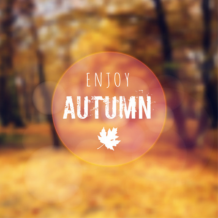 Blurred retro card with autumn, fall forest, vector background