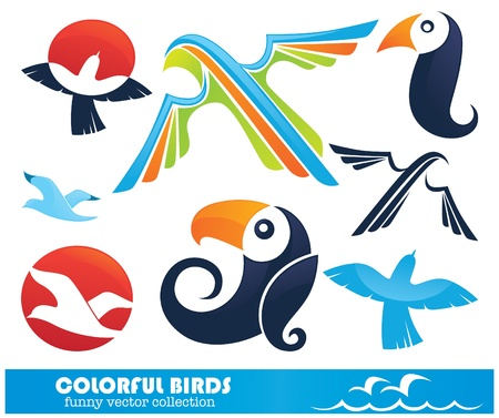 collection of colorful funny birds