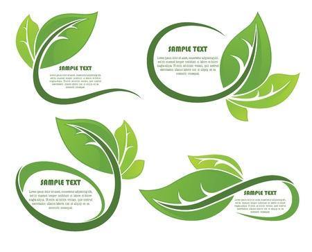 collection of leaf frames