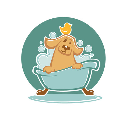 wash your pet, funny cartoon dog taking a bath in bathtube