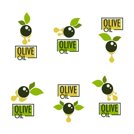 Illustration pour green olive leaves, lettering compositions and oil splashes , vector collection of logo templates, labels, symbols - image libre de droit