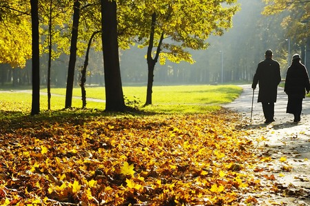 Foto per pensioners walking in the park - Immagine Royalty Free