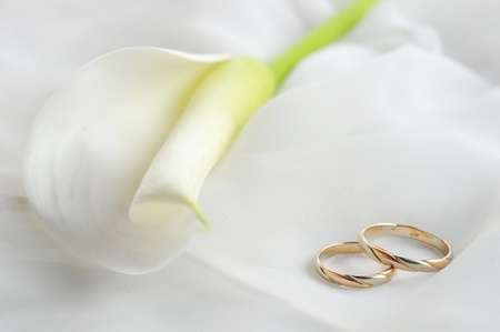 wedding rings and white flower on white material