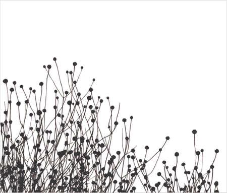 Illustration pour Grass vector silhouette. Is very realistic! - image libre de droit