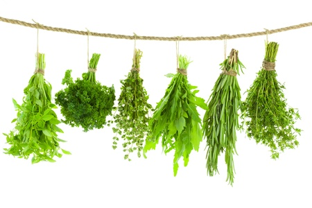 Set of Spice Herbs     isolated on white background    bunches of thyme, basil, oregano, parsley, sage and rosemary are hanging and drying