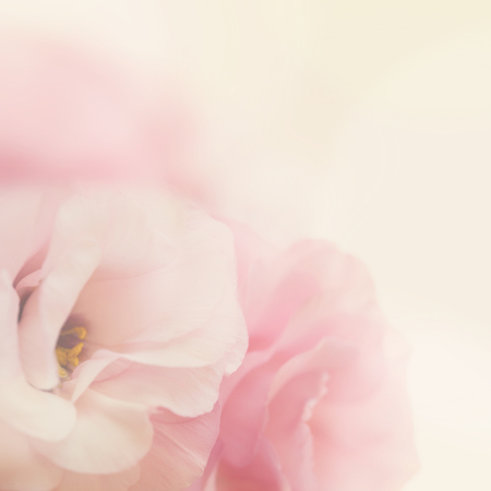 Foto de Vintage gentle pink flowers background- macro - Imagen libre de derechos