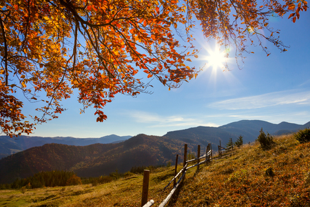 Photo pour Autumn Landscape - yellow  leaves over mountains valley, blue sky and real sun - beautiful fall season day - image libre de droit
