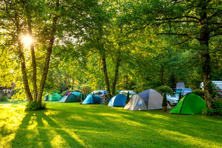 Tents Camping area, early morning, beautiful natural place with big trees and green grass, Europe