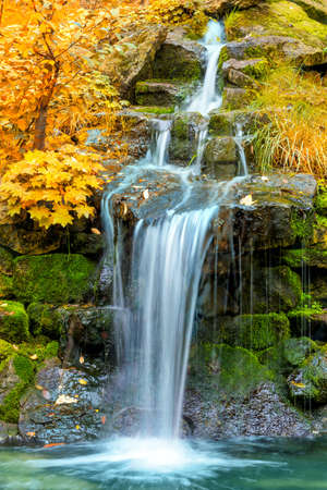 Photo for Waterfall in yellow Autumn forest, landscape, vertical - Royalty Free Image