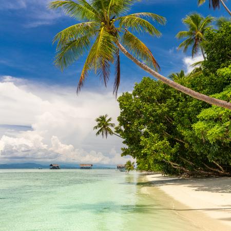 Foto de Paradise tropical beach. Nobody. View of paradise tropical beach with coconut palms. Holiday and vacation concept. Tropical island, ocean and blue sky - Imagen libre de derechos