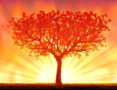 Beautiful autumn sunset tree