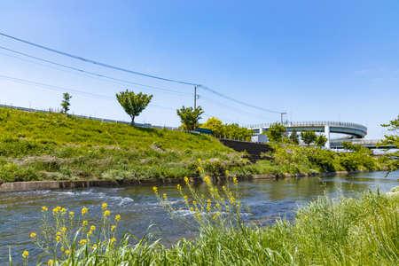 Takanakai200701056