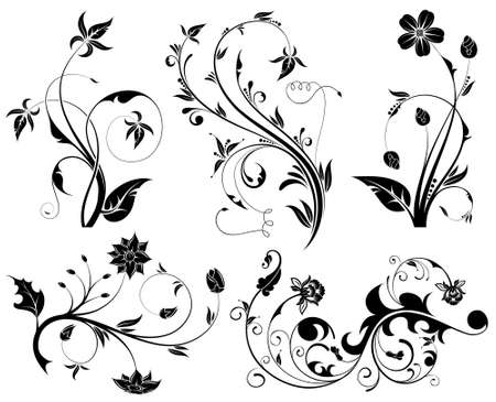 Big Collection Beautiful Flowers, element for design, vector illustration