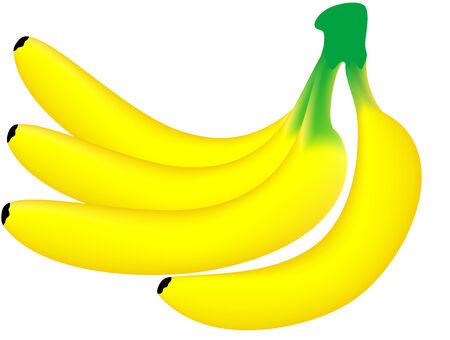 Vector illustration of yellow ripe banana, isolated