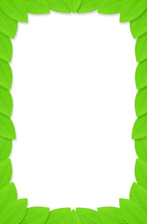 Frame of green leaves with white background.