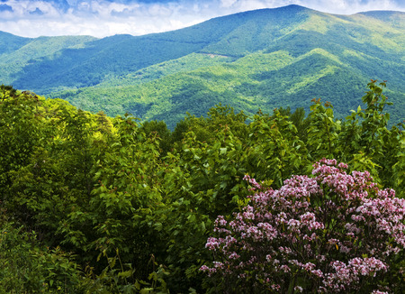 Scenic view of the Blue Ridge and Smoky Mountains in western North Carolina