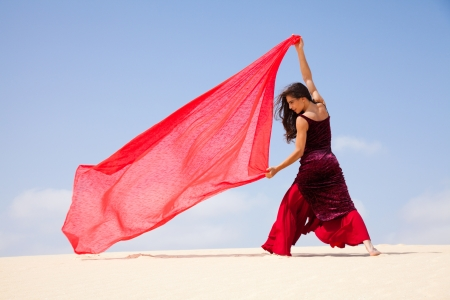 Photo pour flamenco in the dunes - image libre de droit