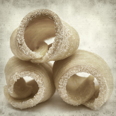 textured old paper background with winter puff pastries of Reinosa, Cantabria, Spain