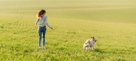 Photo pour Girl with dog on sunny field - image libre de droit
