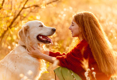 Photo for Young girl petting dog in nature - Royalty Free Image