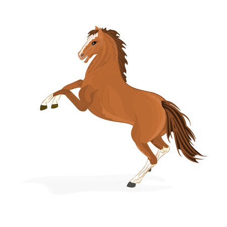 Brown horse vector illustration without gradients