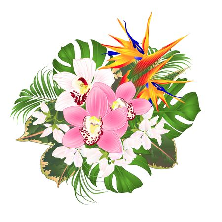 Illustration pour Bouquet with tropical flowers  floral arrangement with beautiful Strelitzia  and white and pink orchids Cymbidium  palm,philodendron and ficus vintage vector illustration  editable hand draw - image libre de droit