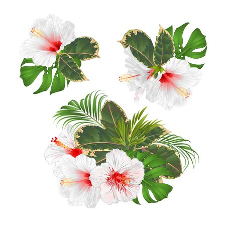 Illustration pour Bouquet with tropical flowers set floral arrangement with beautiful white  hibiscus palm,philodendron and ficus vintage vector illustration  editable hand draw - image libre de droit