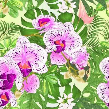 Illustration pour Seamless texture  tropical flowers  floral arrangement beautiful orchids Phalaenopsis  purple and white with    Schefflera  and Monstera vintage vector illustration  editable hand draw - image libre de droit