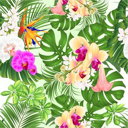 Illustration pour Seamless texture tropical flowers  with  Brugmansia  Strelitzia reginae yellow white and purple  orchid Phalaenopsis palm monstera leaf banana  vintage vector illustration editable hand draw - image libre de droit