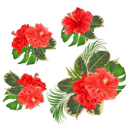Illustration pour Bouquet with tropical flowers set floral arrangement with beautiful pink hibiscus corrugated palm,philodendron and ficus set vintage vector illustration  editable hand draw - image libre de droit