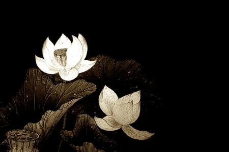 Foto de abstract of brown lotus for background used - Imagen libre de derechos