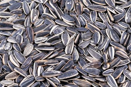 dry roasted sunflower seed