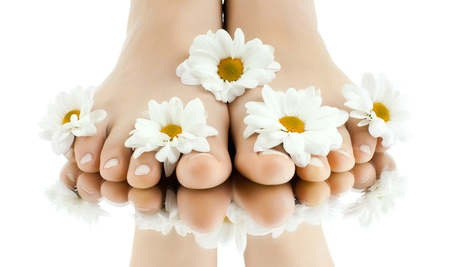 the pretty female legs with fowers, on white background, isolated, close upの写真素材