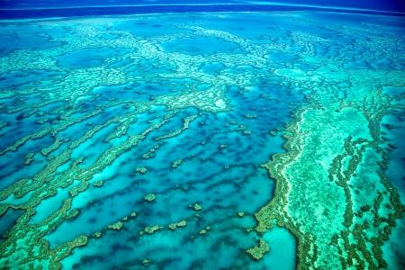 Great Barrier Reef Coral Reef