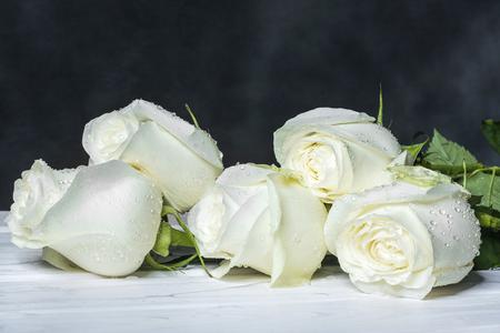 Foto de White roses on white boards and a dark background. - Imagen libre de derechos