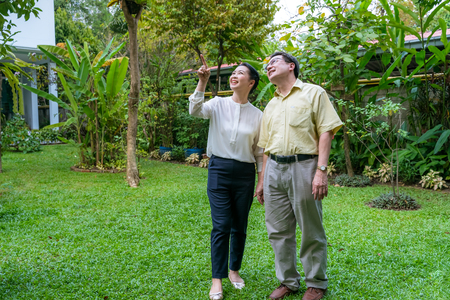 Photo for Asian elderly couples are walking inside the backyard to see nature. - Royalty Free Image