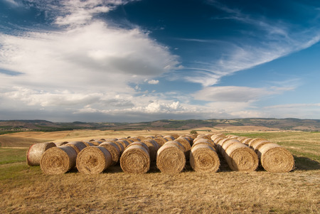 Photo pour A row of hay bales on a field after havest with blue cloudy sky. Location: near Siena, Tuskany, Italy. - image libre de droit