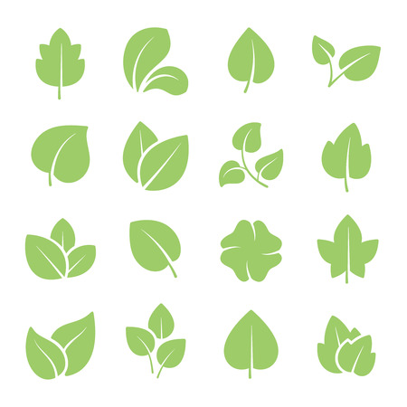 Illustration pour Green tree leaves. Ecology friendly, natural greens young plants pictograms and leaf or forest branch leaves. Nature greenery eco garden plant vector isolated icons set - image libre de droit