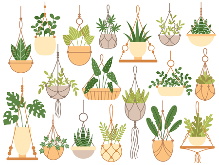 Illustration for Plants in hanging pots. Decorative macrame handmade hangers for flower pot, hang indoor plants. Planting flowers, plantar pots garden decoration flat isolated vector icons set - Royalty Free Image