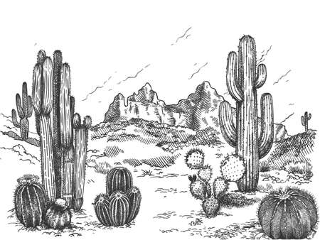 Illustration pour Desert landscape. Hand drawn mexican prairie with plants and blooming cactuses, prickly succulents nature wild west sketch vector background. Scenery with rock and mountain, environment - image libre de droit