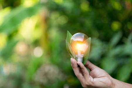Foto de Hand holding light bulb with icons energy sources for renewable,love the world concept. - Imagen libre de derechos
