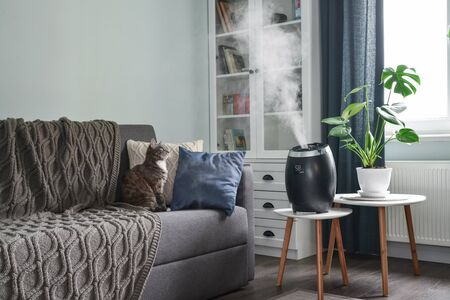 Photo pour Ultrasonic cool mist humidifier for home on a small table in living room  - image libre de droit