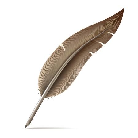 Illustration pour Image of feather pen on white background  Vector illustration - image libre de droit