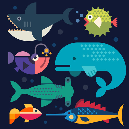 Sea life. Big fish. Vector flat illustrations